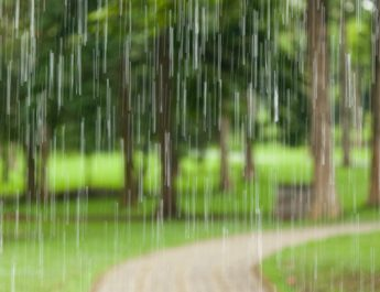 Twilight Golf 14/12 cancelled due to Wet weather